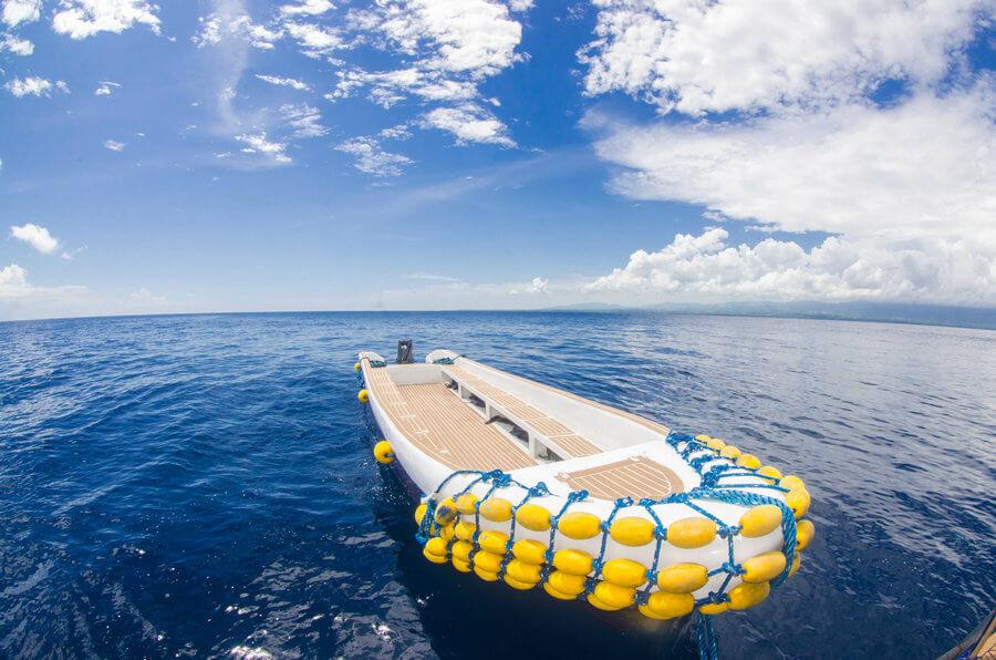 Synthetic Teak Decking For Dive Plateform